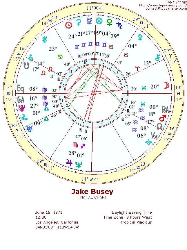 Jake Busey natal wheel chart