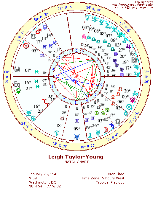 Leigh Taylor-Young natal wheel chart